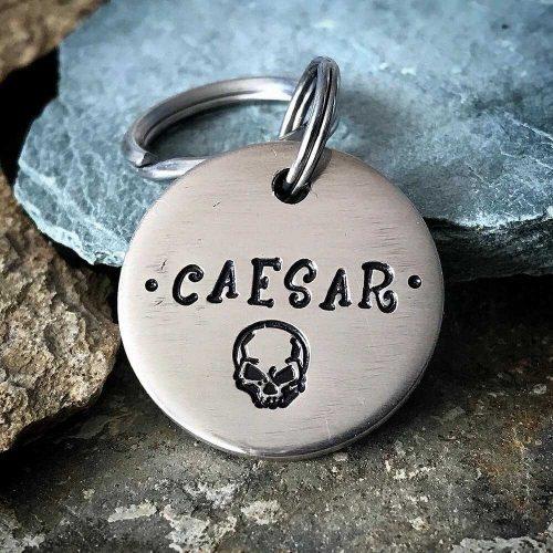 Адресник для собаки CAESAR