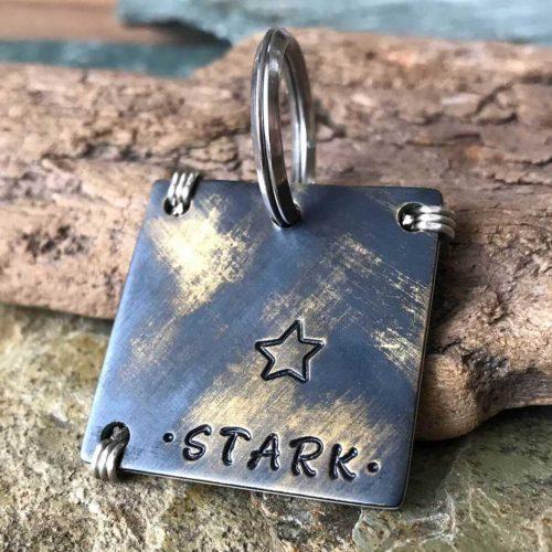 Адресник для собаки STARK