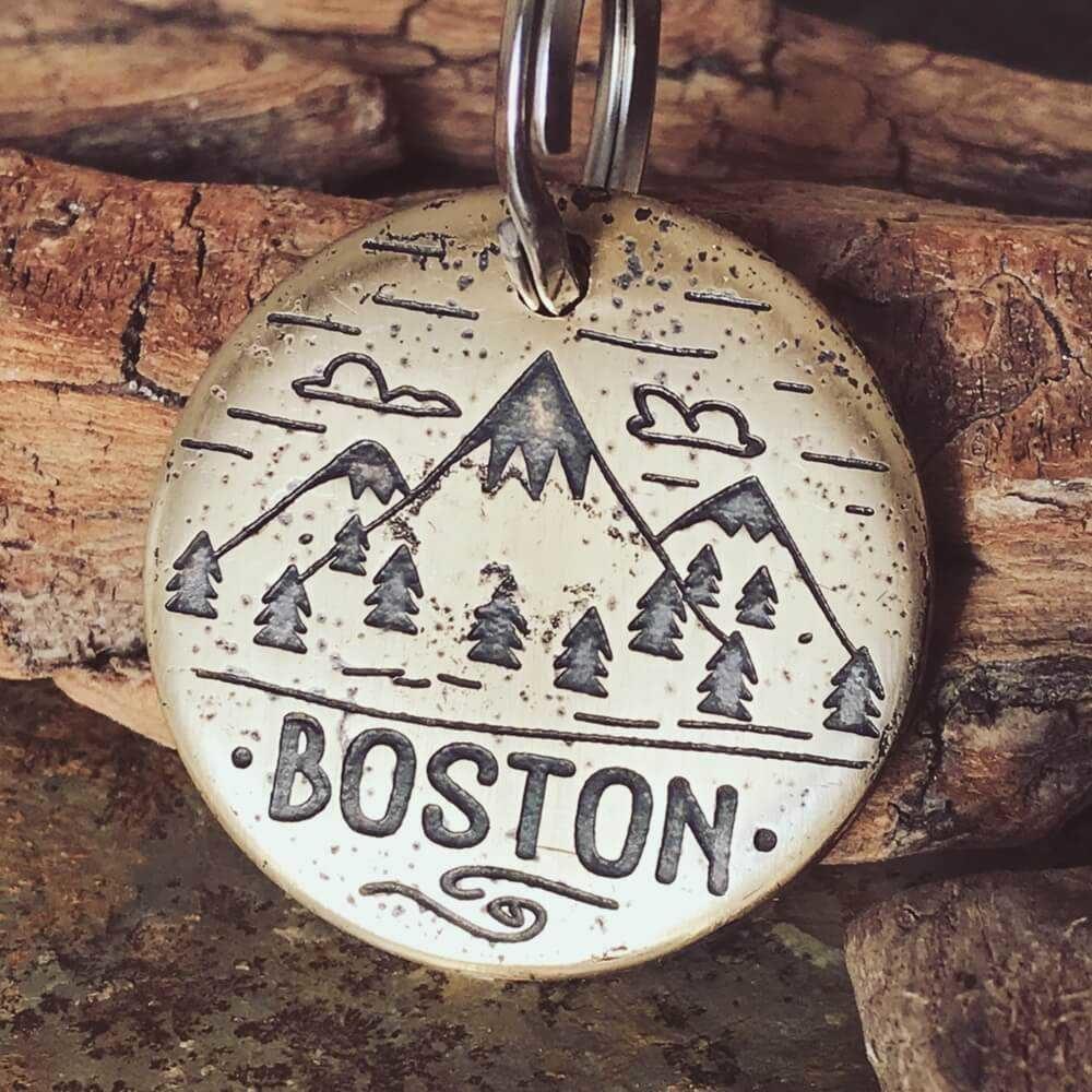 Медальон для собаки BOSTON с гравировкой заказать-2