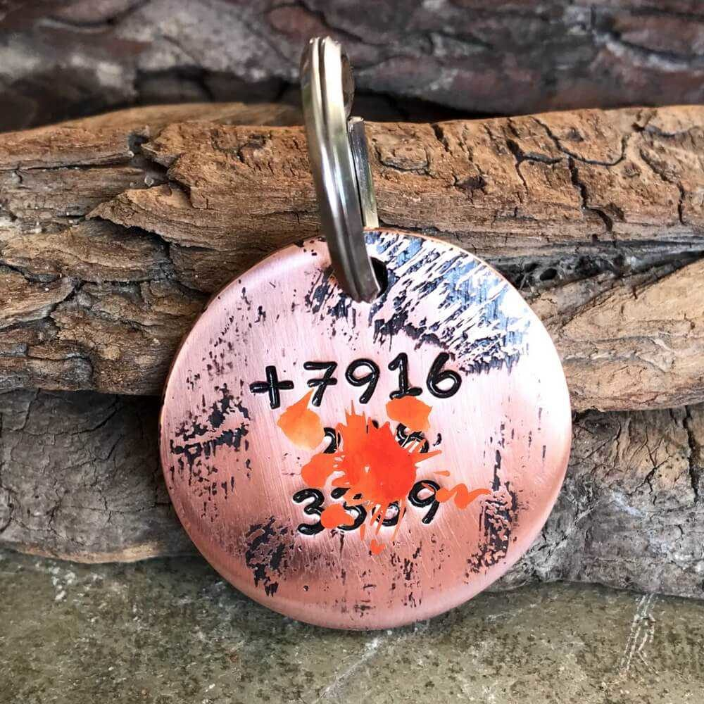 Заказать медальон BOSTON CITY для собаки-2